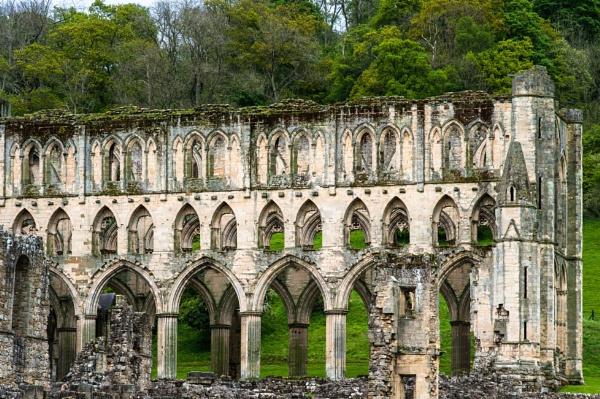Rivaux Abbey (1) by DavidMosey