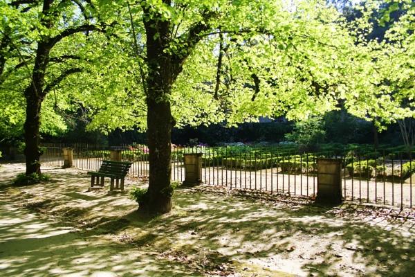 Botanic garden by MAdelinaVizoso