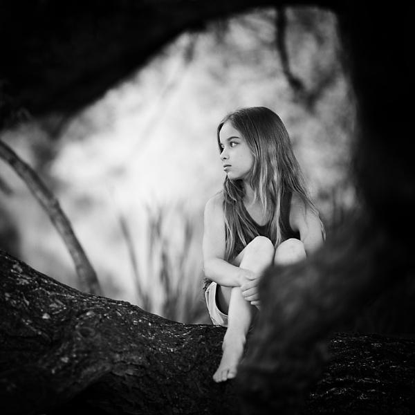 Secret tree by ZanetaFrenn