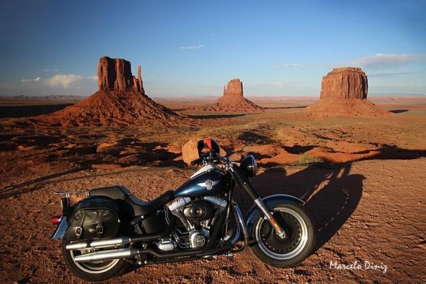 Harley Davidson by mdiniz