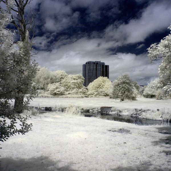 Kodak Tower by bmh1
