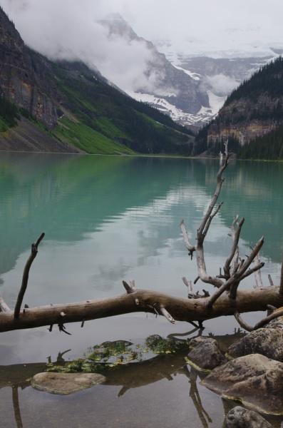 Lake Louise by dbedford