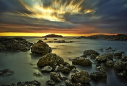 Sea Pinks Iona