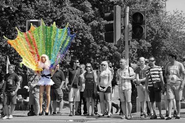 Pride by MandyG