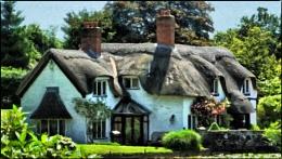 cottage in badger