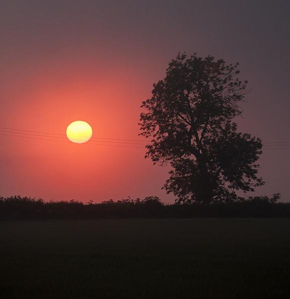 Sunday night sunst by milepost46