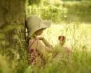 Seeking shade