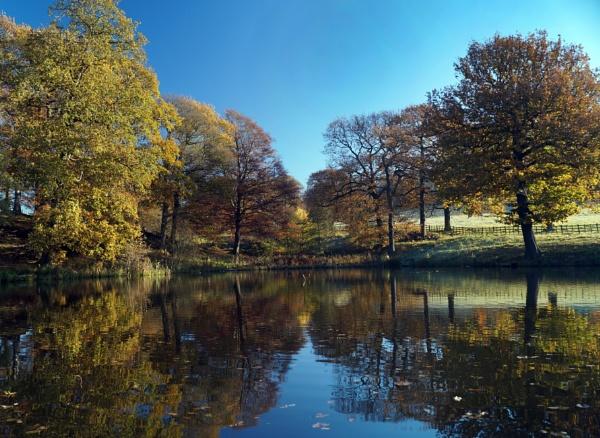 Hardwick Ice Pond by Dalejackson