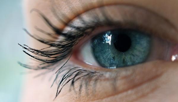 Eye Spy by Dalejackson