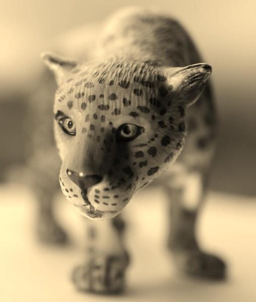 plastic leopard by stu8