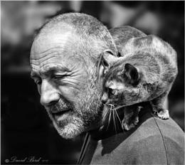 Man'n'Cat