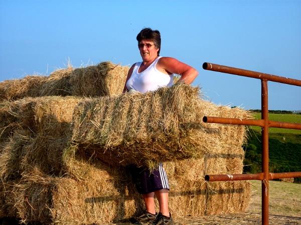 Plenty to do ,living on a Farm by netta1234