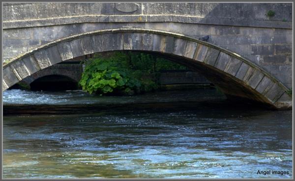 A river runs through it.. by ColleenA