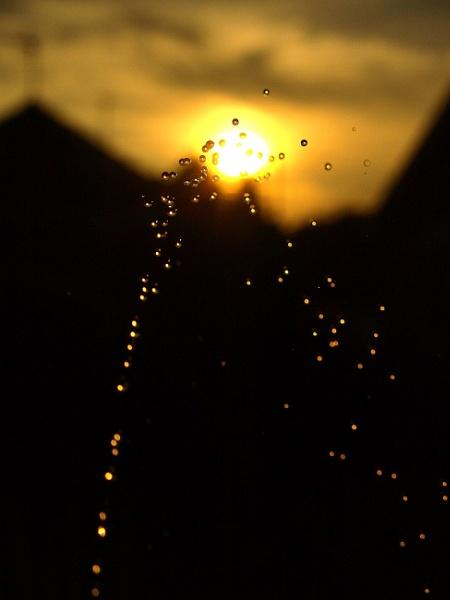Sun spray by turniptowers