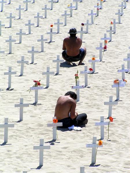 The real veterans by Aldo Panzieri