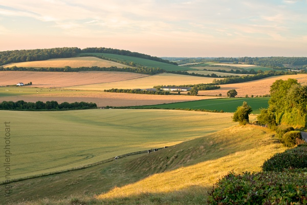 Summer on the Downs by rvoller