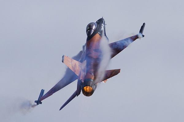 Dutch Falcon by CanonMan