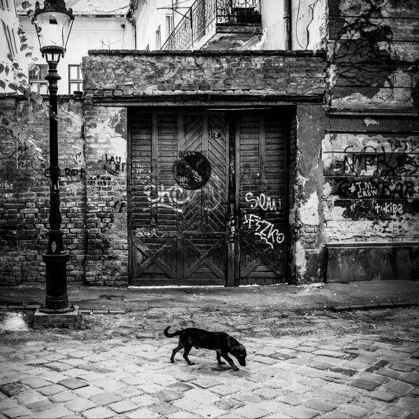 Subotica 2013 by GoranStamenkovic
