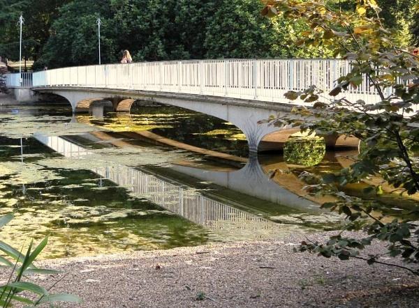 Bridge & Reflection