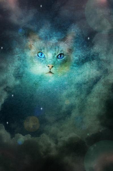 Cosmic by gingerdelight