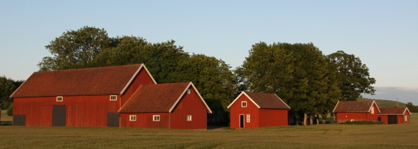 Farm in the evening light by Cowser