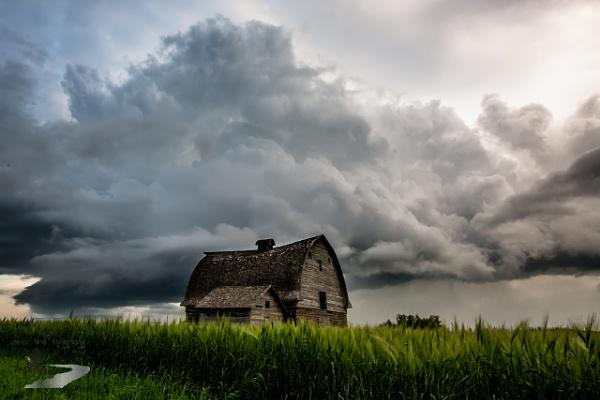 Prairie Sky by inntrykk