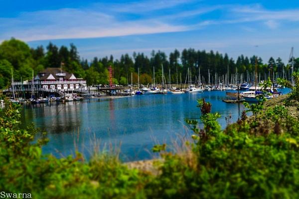 Stanley Park - Vancouver BC by Swarnadip
