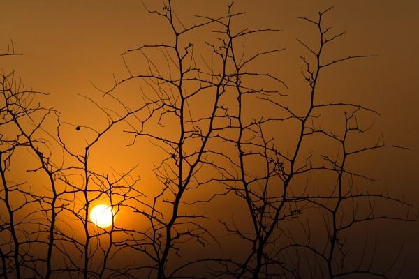 Sunset at Jingshan by Benlib