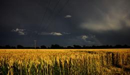storms edge