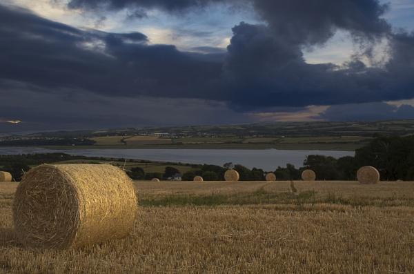 Haydays by Devon_Sunsets