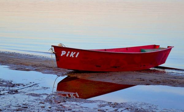 Piki by Davidroid