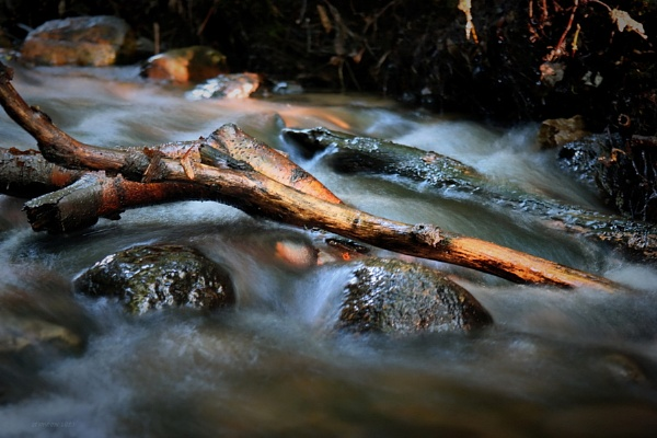 where rivers flowing thoughts by atenytom