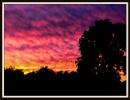 A fiery Sky!