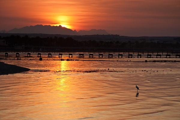 Sunset in Egypt by steve_fdr
