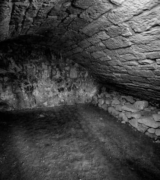Wine Cellar? by ajm