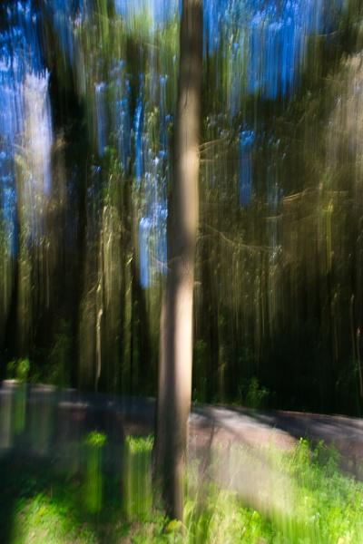 Motion Blur by jacks_19