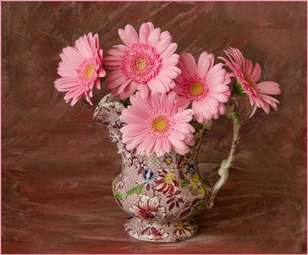 Pinks. by myrab