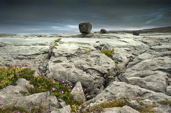 The Burren by bombolini
