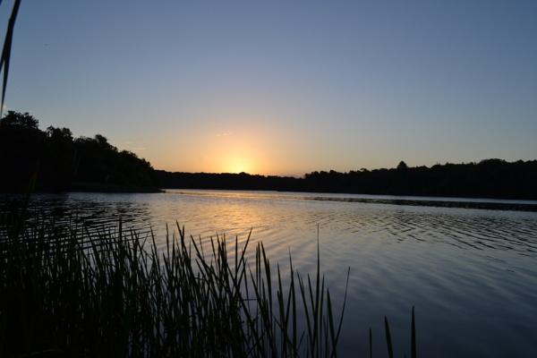 Dawn at the lake by cathsnap