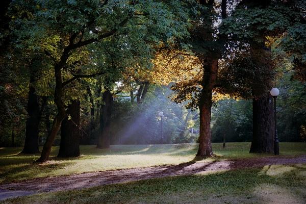 light my day by atenytom