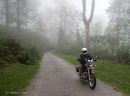 Misty Ride