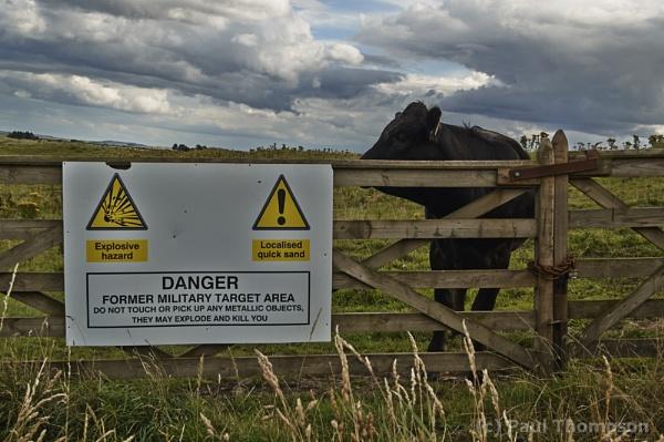 Danger! by P_Thompson