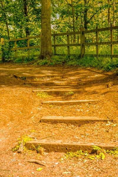 Steps by swiftflo