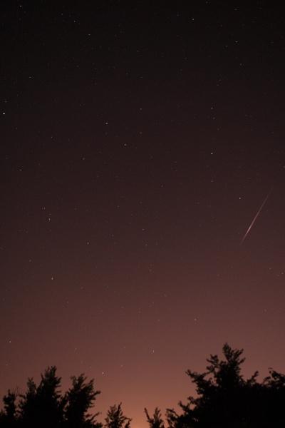 Perseids Meteor Shower by 1natalieD