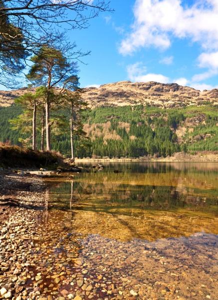 Loch Eck by billmac57