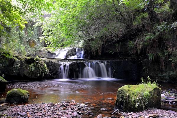 Garell Glen,Kilsyth, Scotland
