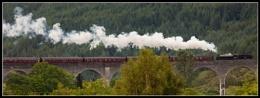 The Jacobite Crosses Glenfinnan Viaduct