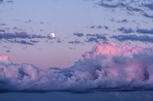 August Moon by Joline