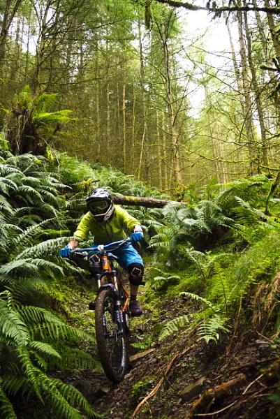 Mountain Bike by george-sewell