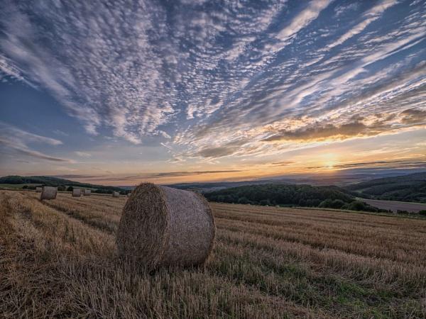 Field of Dreams by mlseawell